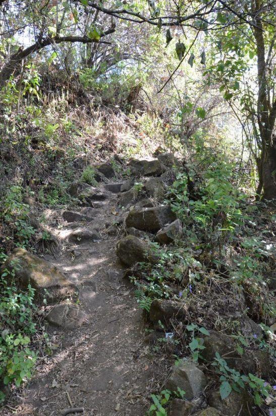 trail to pyramid of san felipe de los alzati, zitacuaro, mexico 4