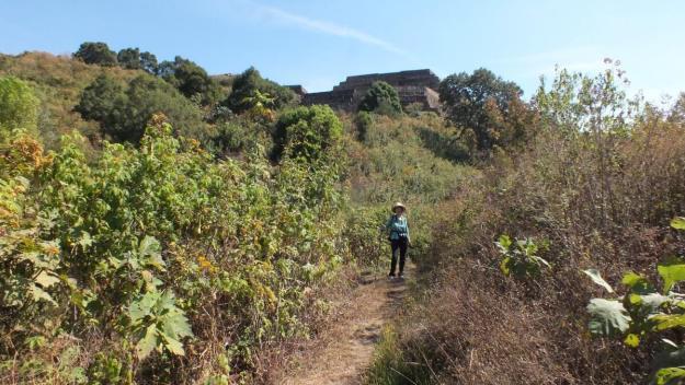 trail to pyramids of san felipe de los alzati, zitacuaro, mexico 4