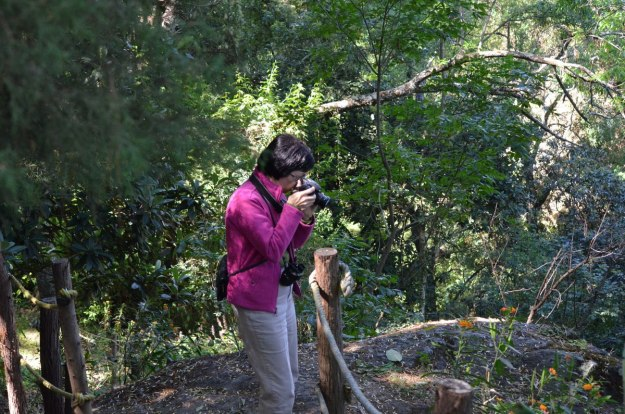Jean taking photos of birds at Hotel Rancho San Cayetano, in Zitacuaro