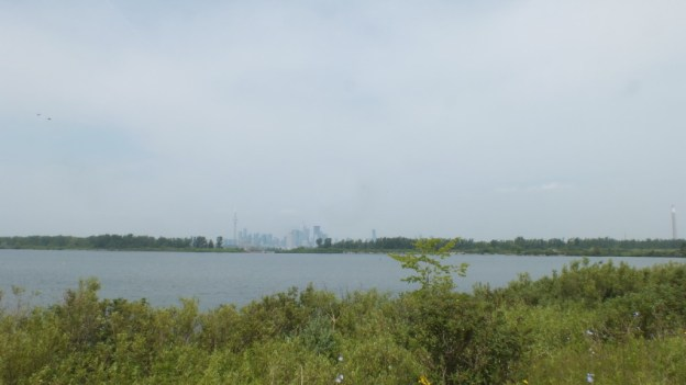 toronto viewed from tommy thompson park, ontario