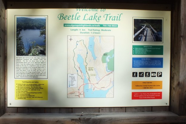 beetle lake trail sign, oxtongue lake, ontario,