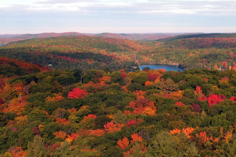 fall colors, dorset tower view, ontario, pic 1