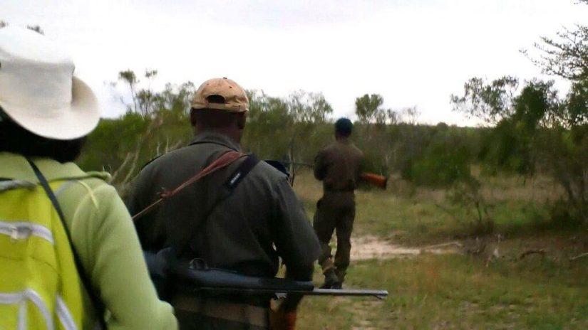 armed safari, kruger national park, south africa