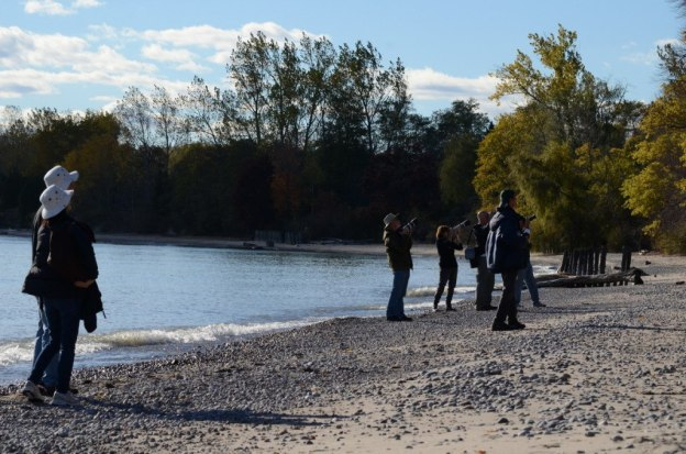 birders with cameras on the shore of lake ontario, Ontario