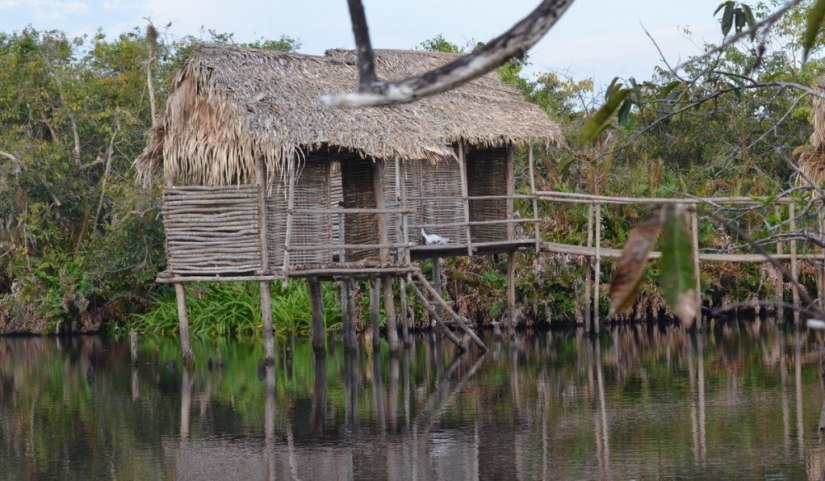 Photo of a hut on stilts at Cabeza de Vaca in the mangrove swamp near San Blas, Mexico