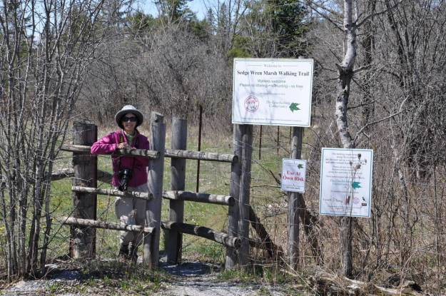 jean on the sedge wren walking trail, carden alvar, ontario