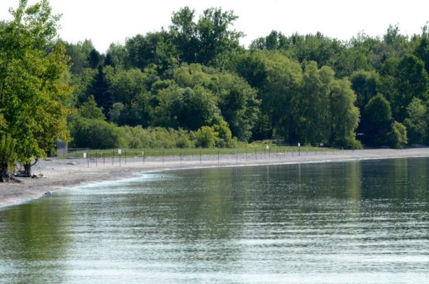 Piping plover protected area along Lake Ontario at Darlington Provincial Park, Ontario