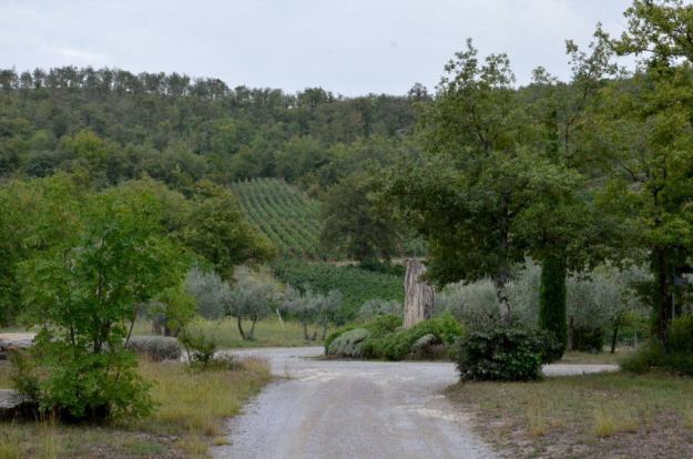 Gravel lane to stone cottage at Il Colombaio di Cencio, Gaiole, Chianti, Tuscany, Italy