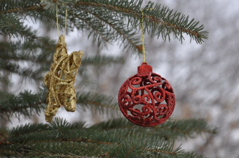 decorations-on-the-christmas-tree-at-lynde-shores-conservation-area-whitby-ontario-1