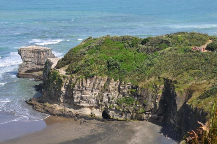 muriwai-gannet-colony-waitakere-new-zealand-pic-2