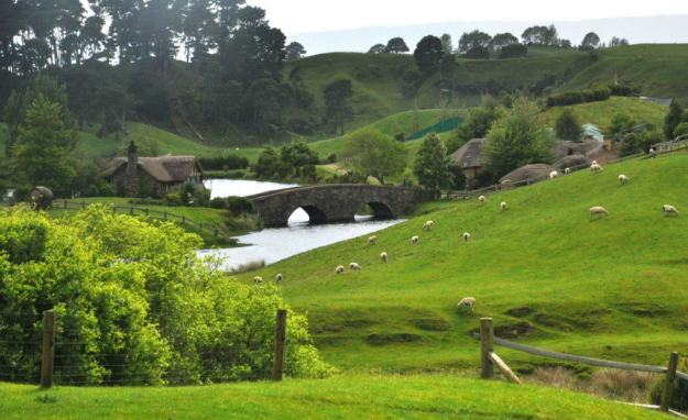 An image of sheep on a green field beside the stone bridge at Hobbiton in New Zealand. Photography by Frame To Frame - Bob and Jean.
