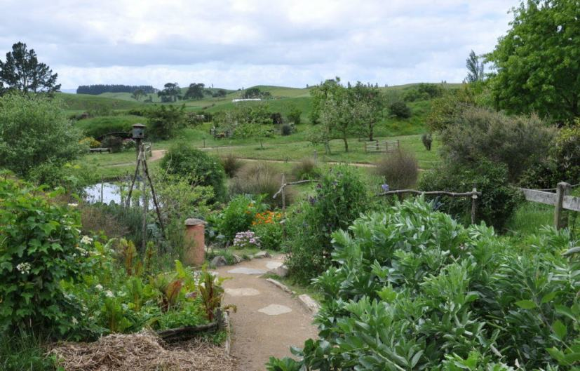 An image of the view of the frog pond as seen from Sackville Baggins gardens at Hobbiton in New Zealand. Photography by Frame To Frame - Bob and Jean.