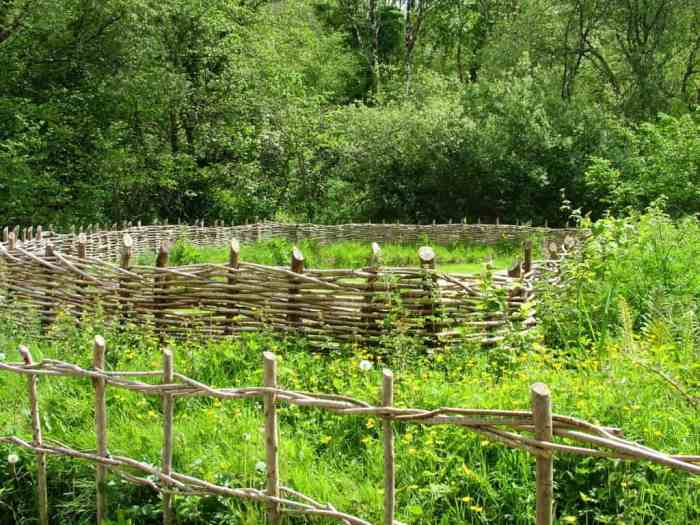 a wattle enclosure at Irish National Heritage Park in Ireland