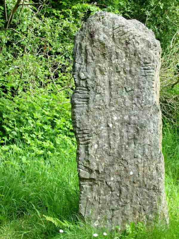 the Ogham Stone at Irish National Heritage Park in Ireland