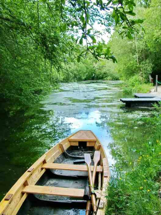 wetlands at Irish National Heritage Park, Ireland