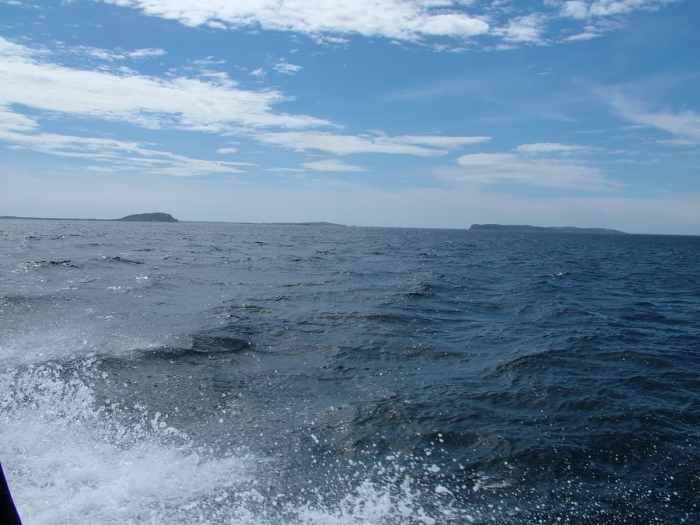 quirpon island across the sea, newfoundland, canada