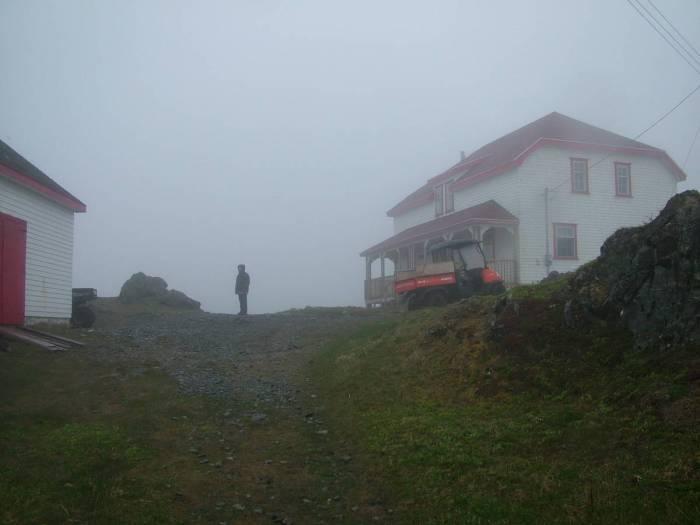 fog on quirpon island, newfoundland, canada