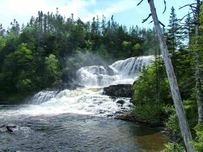 baker's brook falls in gros morne national park, newfoundland