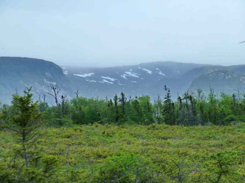 snow-capped mountains along baker's brook falls trail in gros morne national park, newfoundland