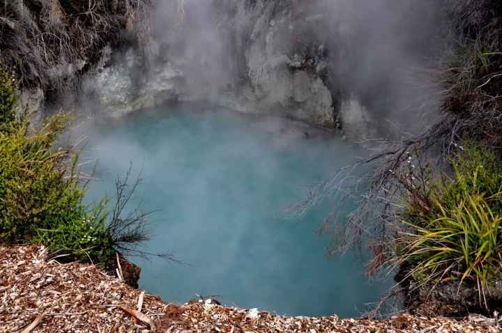 Image of hot springs at Te Puia Geothermal Preserve, Rotorua, New Zealand