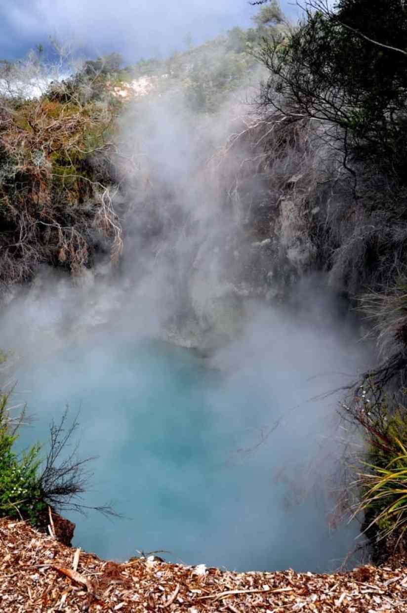 Image of a hot springs at Te Puia Geothermal Preserve, Rotorua, New Zealand