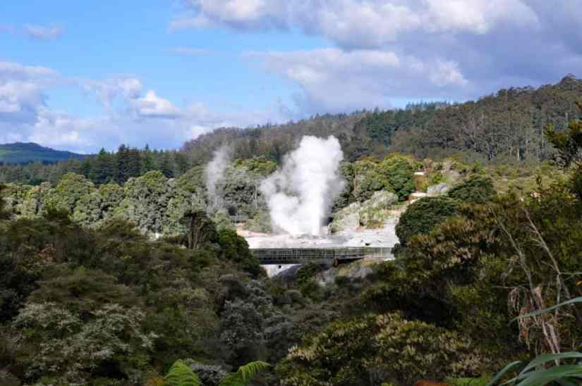 Image of Pohutu Geyser at Te Puia Geothermal Preserve near Rotorua, New Zealand