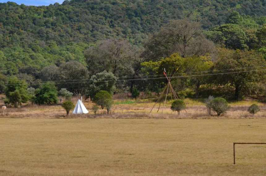 a meadow at rancho la noria near tepic, mexico