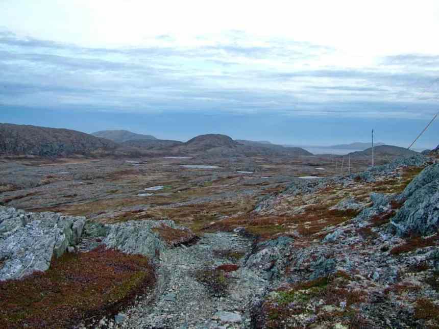 a vast stretch of bog, peat and rock on quirpon island, newfoundland, canada