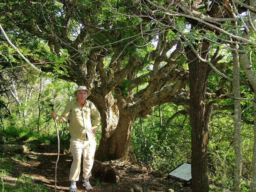 bob on the mbhome self-guided trail at hilltop camp, hluhluwe-imfolozi, south africa