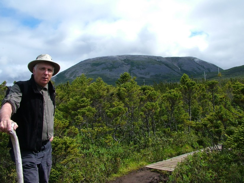a view of bob and gros morne mountain, newfoundland, canada