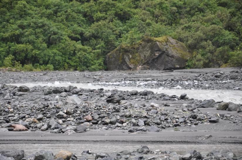 fox river, fox glacier valley, south island, new zealand