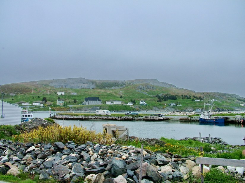the harbour, colony of avalon, newfoundland, canada
