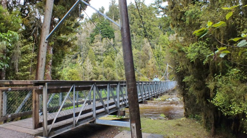 the clearwater river suspension bridge, lake matheson, south island, new zealand