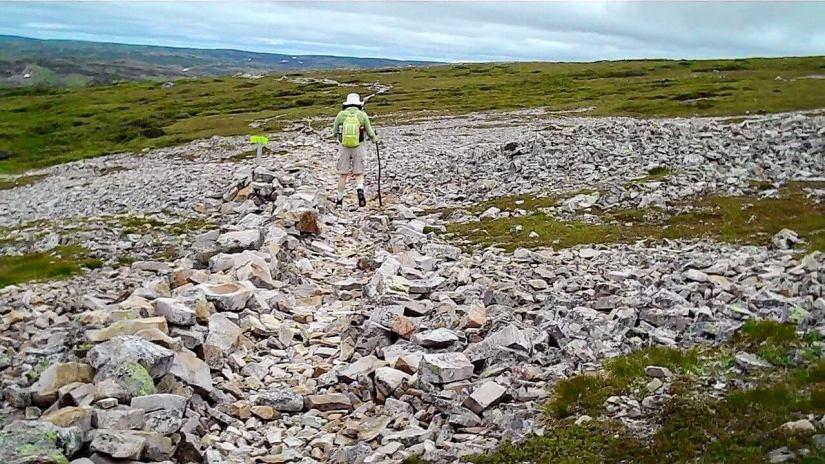 gros morne hiking trail, gros morne mountain, newfoundland, canada