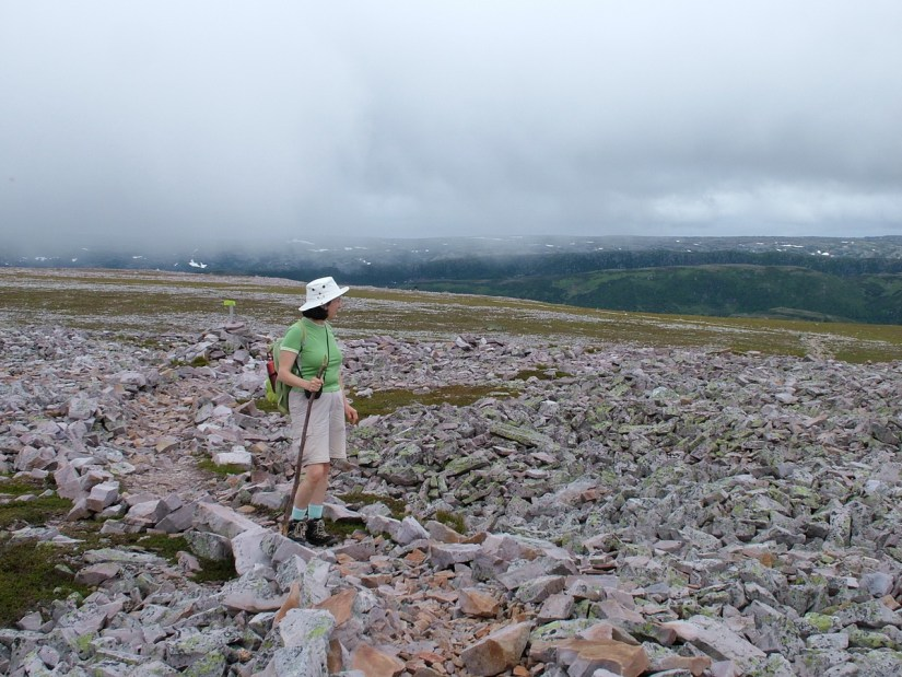 jean on the rocky trail, gros morne mountain, newfoundland, canada