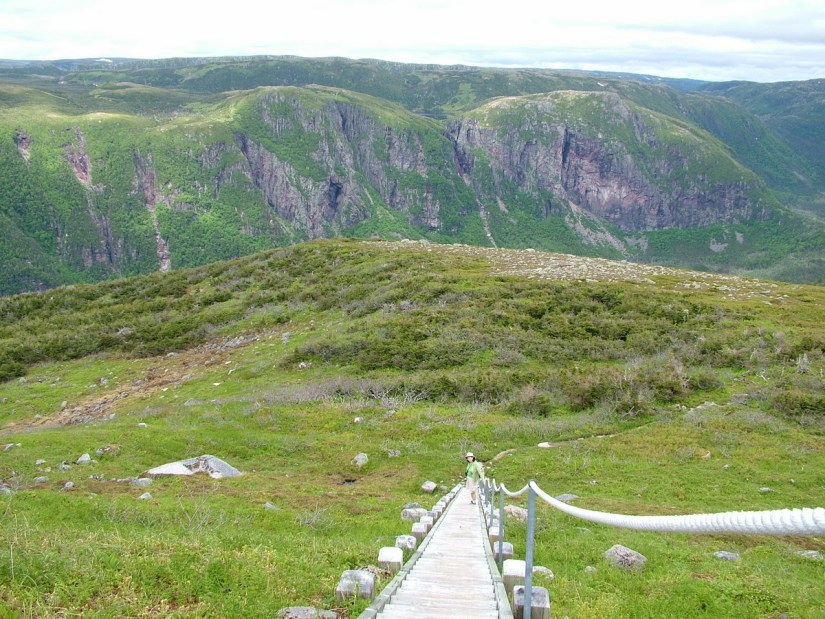 wooden steps down from the summit, gros morne mountain, newfoundland, canada
