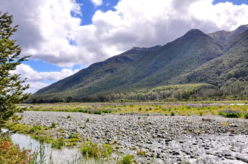 eglinton river and mountains, eglinton river valley, fiordland national park, new zealand