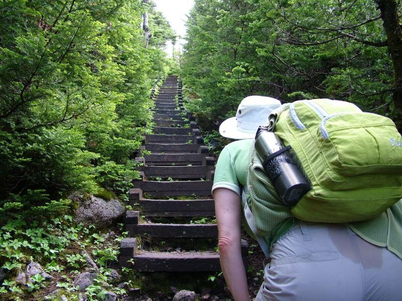wooden steps, gros morne mountain trail, newfoundland, canada