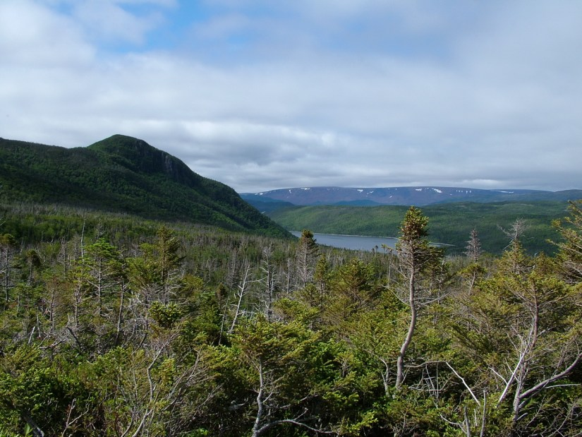 a view of bonne bay and the tablelands, gros morne mountain, newfoundland, canada