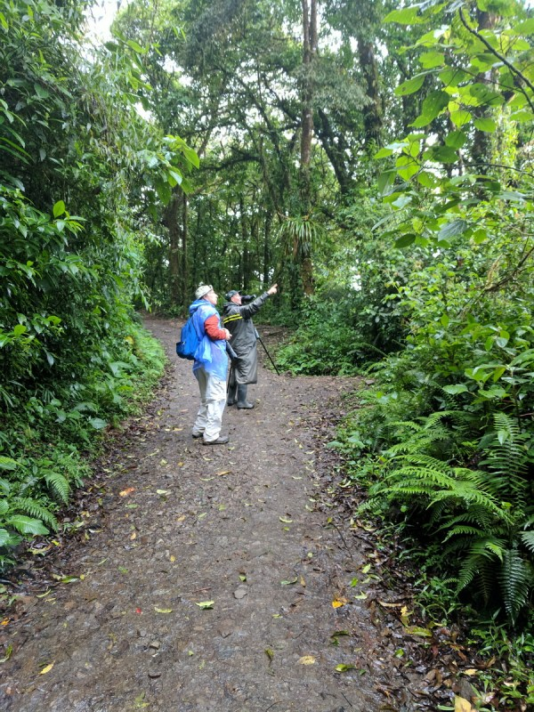 bob and ricardo guindon, monteverde cloud forest preserve, costa rica
