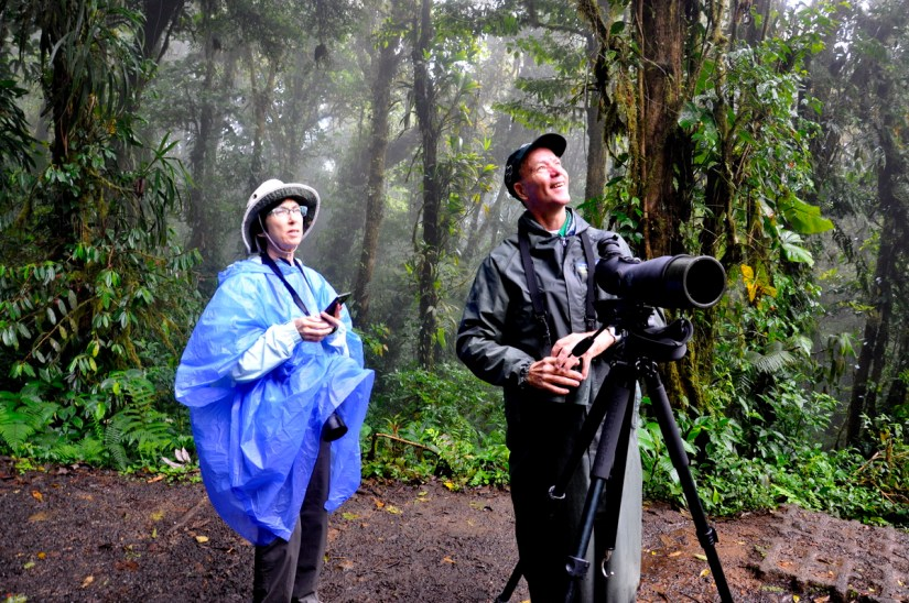 jean and ricardo guindon, monteverde cloud forest preserve, costa rica