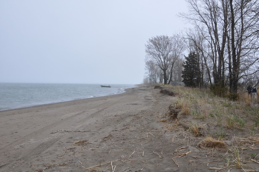 the beach at the tip of long point, lake erie, ontario