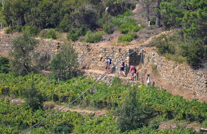 cogwheel railway track, cinque terre, italy