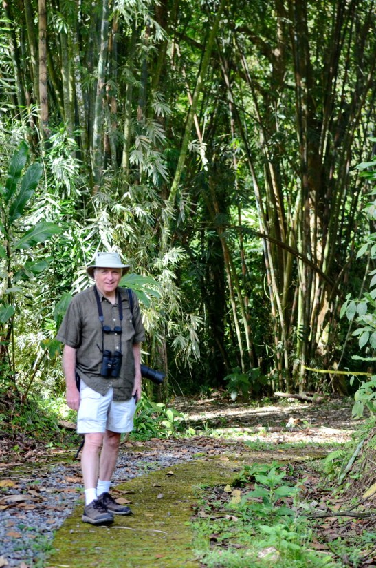 bob on a trail, the grounds, kokoro lodge, la fortuna, costa rica