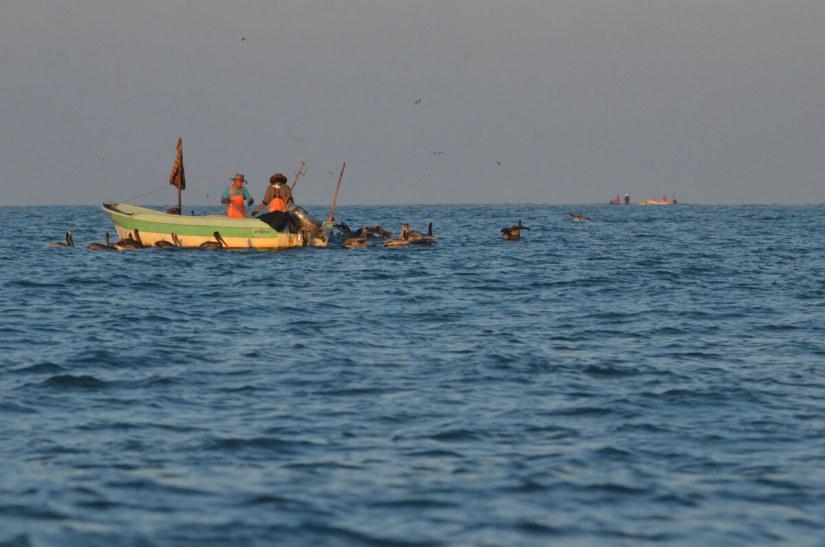 fishermen in a panga, pacific ocean off san blas, mexico