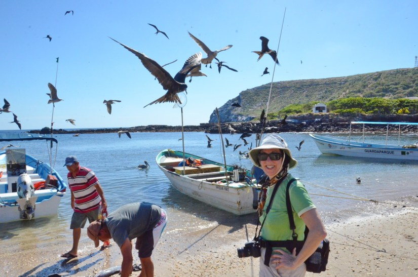 jean watching fishermen and magnificent frigatebirds, isla isabel, mexico