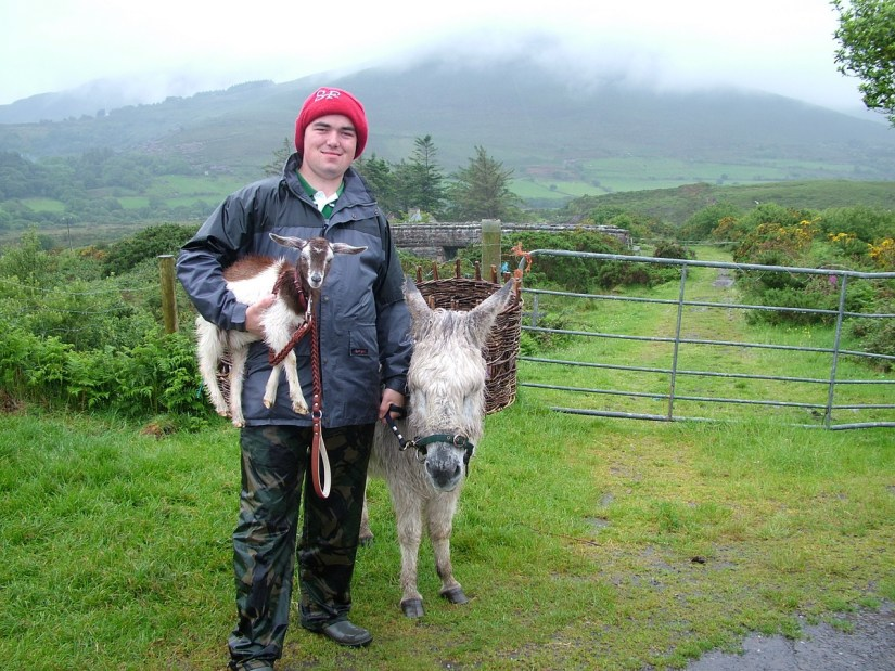 a goatherd and his goat and donkey, killorglin, ring of kerry, ireland