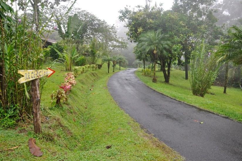 the lane into kokoro lodge, la fortuna, costa rica