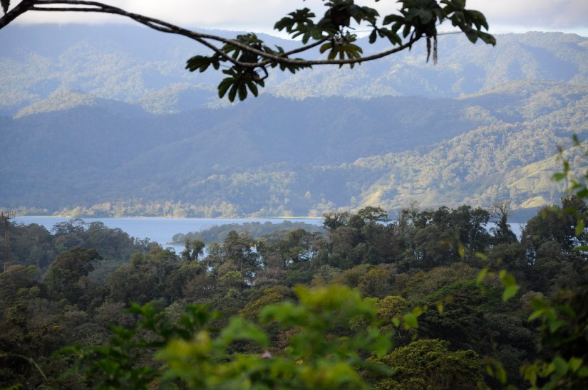 lake arenal and the tilaran mountain range, mistico arenal hanging bridges park, la fortuna, costa rica