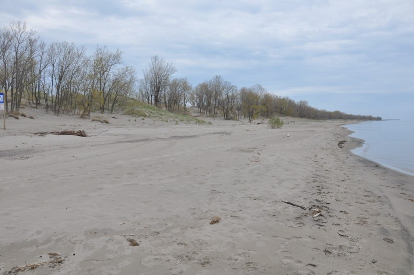 the beach, the new long point provincial park, long point, ontario